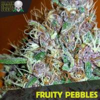 Fruity Pebbles Feminised Cannabis Seeds | Black Skull Seeds