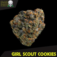 Girl Scout Cookies Feminised Cannabis Seeds | Black Skull Seeds