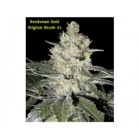 Skunk #1 Regular Cannabis Seeds | Seedsman